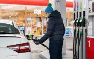 Benzina má téměř čtvrtinu trhu a velký apetit pro příští rok